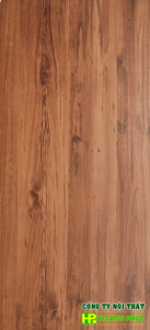 G1304 - Montana Pine