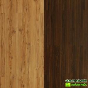 CF8+: 1660-1161 Castillo Spruce-Zen Chestnut