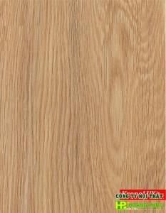 P1171 - Virginia Oak