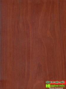 T2105 - Santos Rosewood